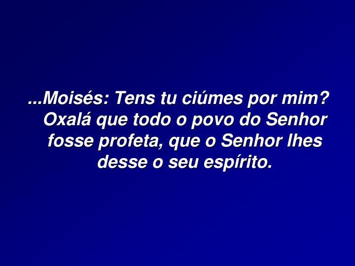 ...Moisés: Tens tu ciúmes por mim?                                                      Oxalá que...