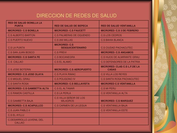 DIRECCION DE REDES DE SALUD