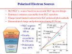 polarized electron sources
