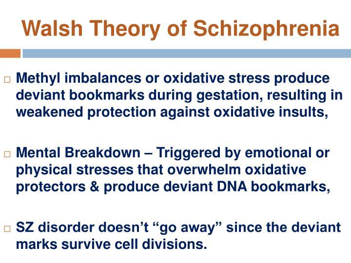 Walsh Theory of Schizophrenia
