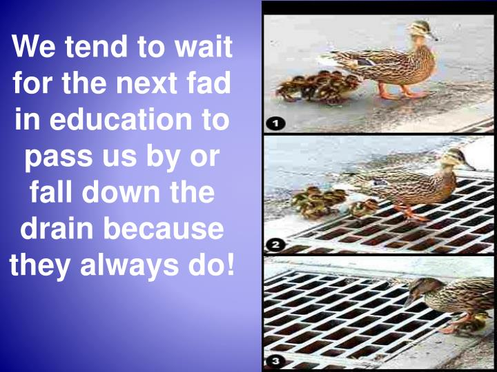 We tend to wait for the next fad in education to pass us by or fall down the drain because they always do!