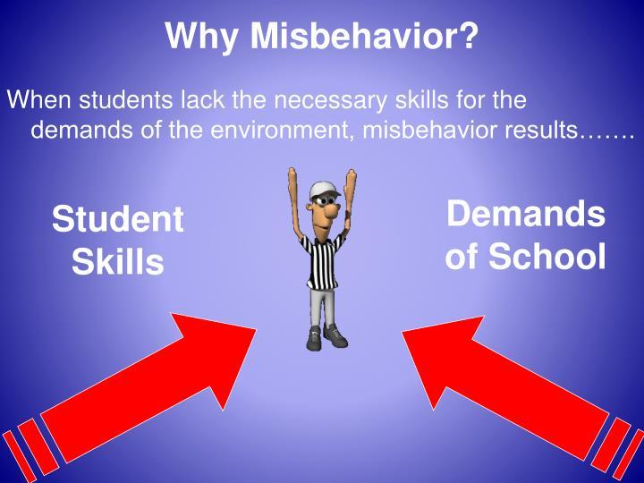 Why Misbehavior?