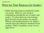 what are your purposes for grades