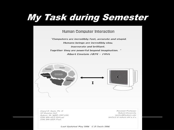 My Task during Semester