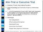 mini trial or executive trial