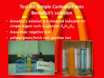 test for simple carbohydrates benedict s solution