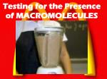 testing for the presence of macromolecules