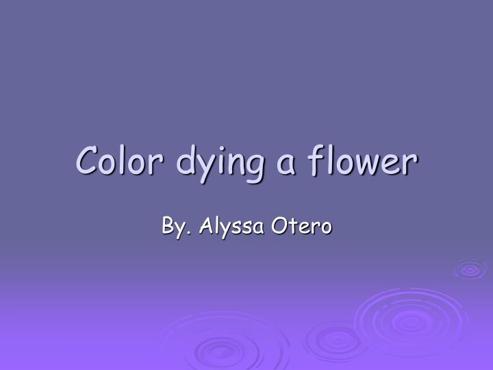 color dying a flower n.