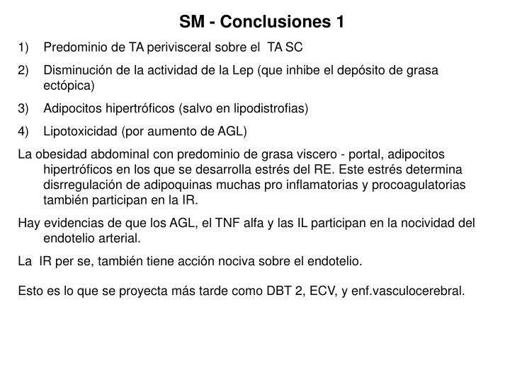 SM - Conclusiones 1