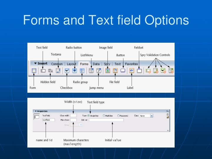Forms and Text field Options