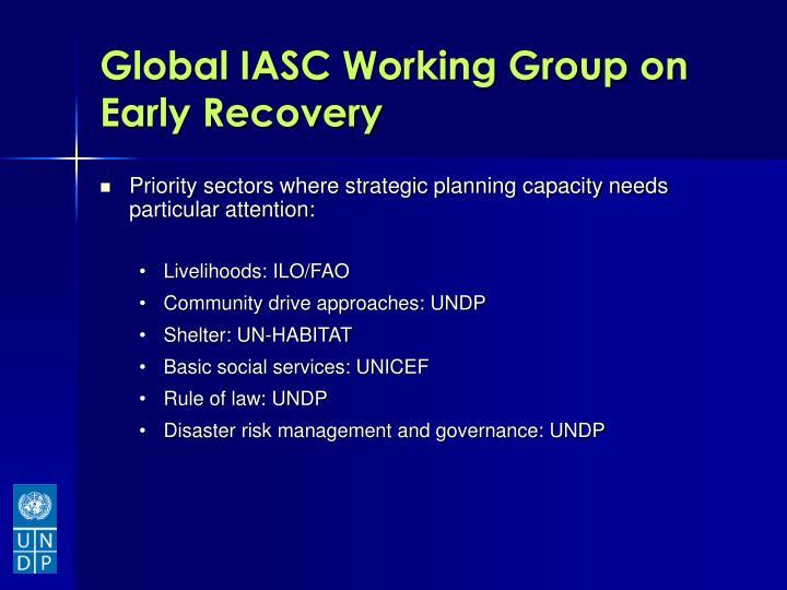 Global IASC Working Group on