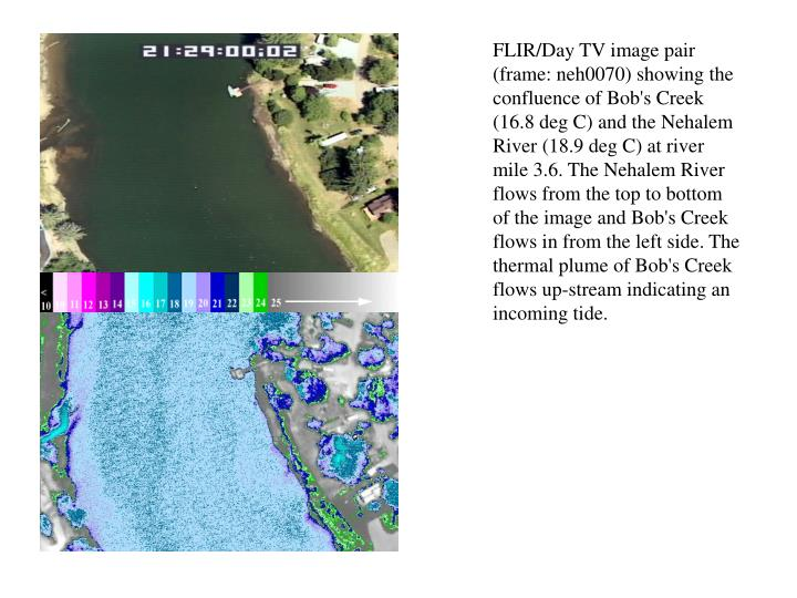 FLIR/Day TV image pair (frame: neh0070) showing the confluence of Bob's Creek (16.8 deg C) and the N...