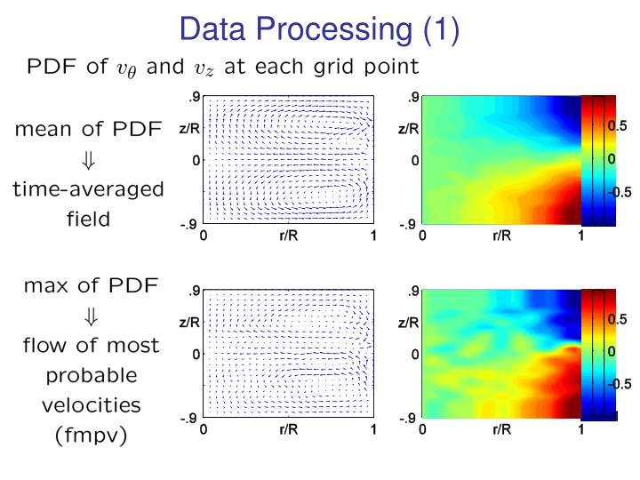 Data Processing (1)
