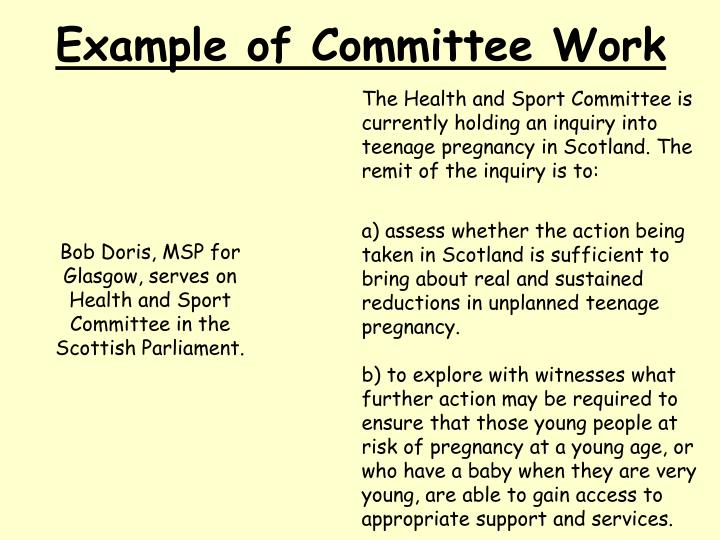 Example of Committee Work