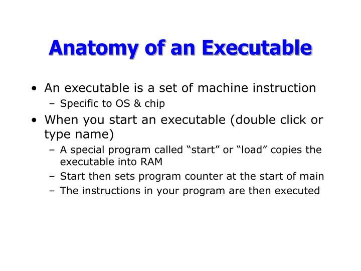 Anatomy of an executable