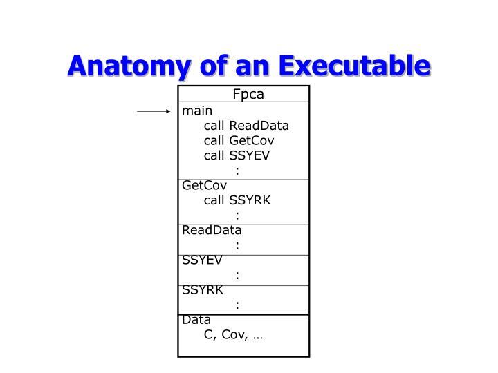 Anatomy of an executable1