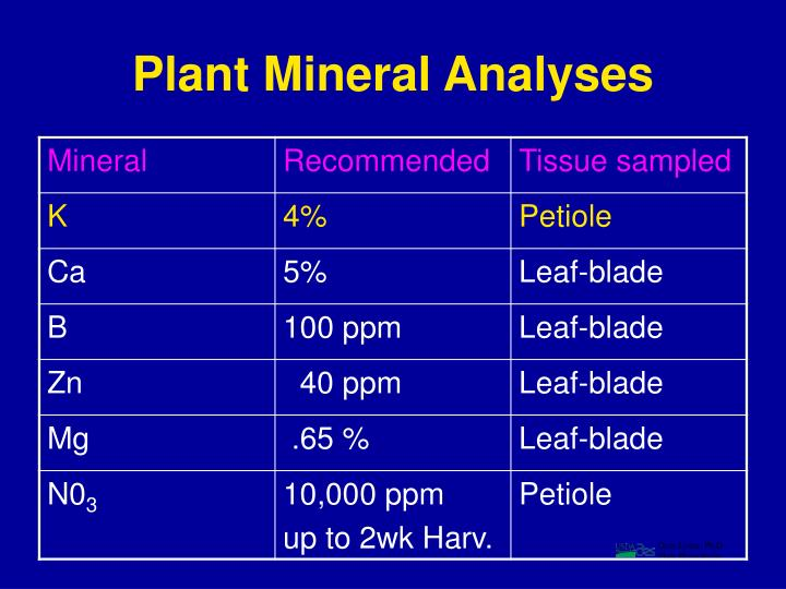 Plant Mineral Analyses