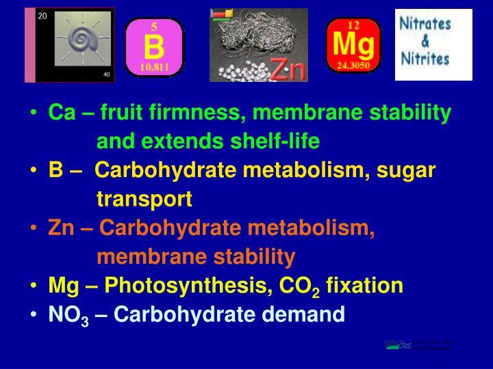 Ca – fruit firmness, membrane stability