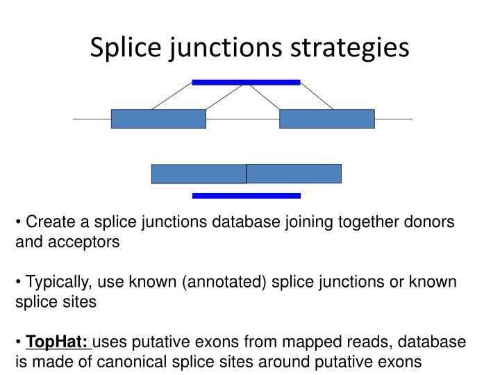 Splice junctions strategies