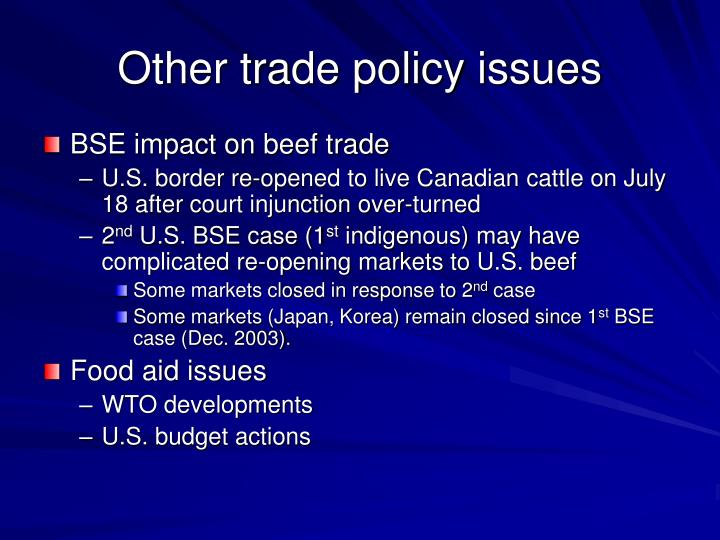 Other trade policy issues