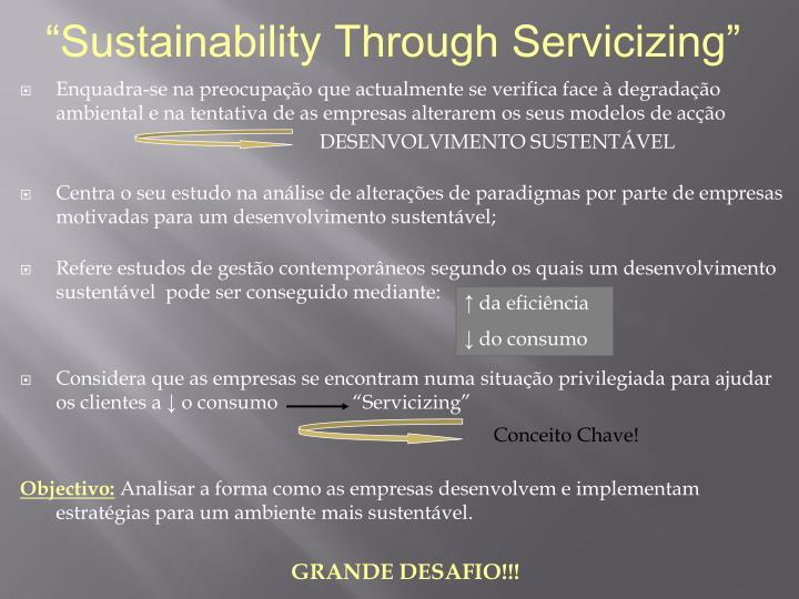 """""""Sustainability Through Servicizing"""""""