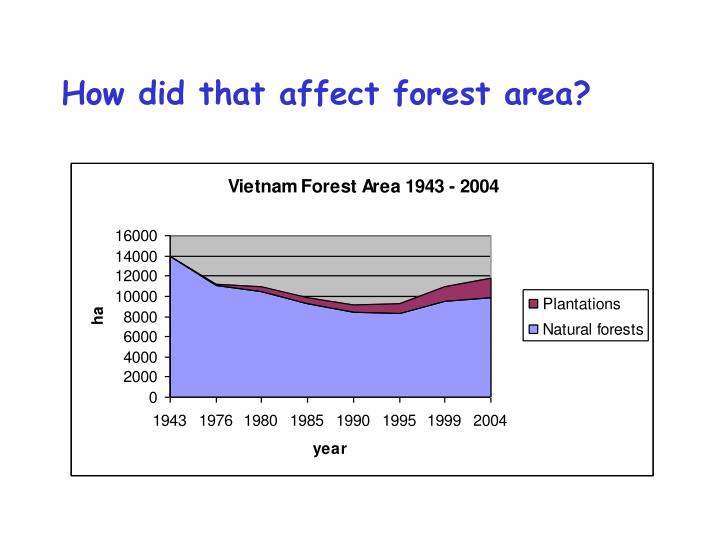 How did that affect forest area?