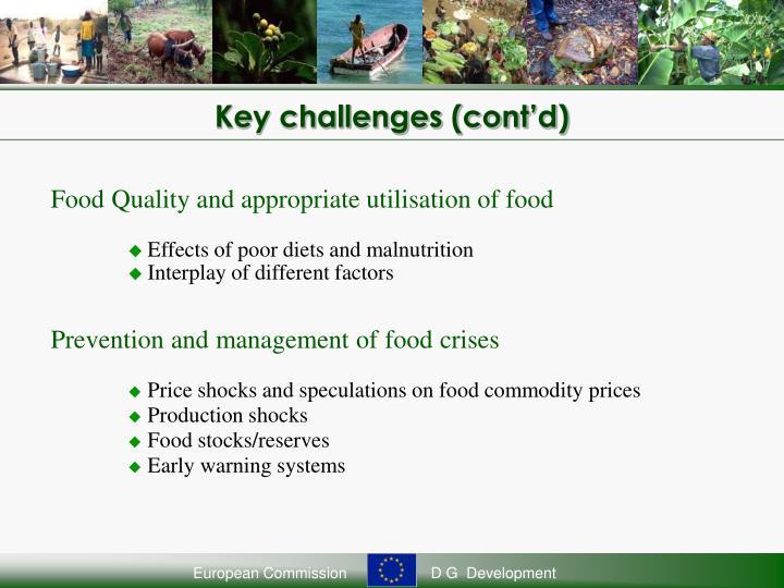 Key challenges (cont'd)