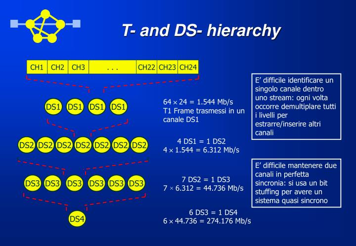T- and DS- hierarchy