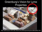 greenburg s vision for lyme properties