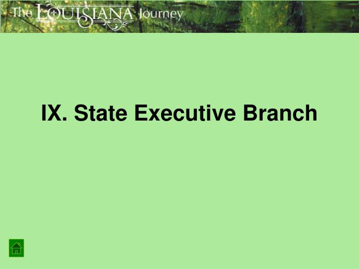 IX. State Executive Branch