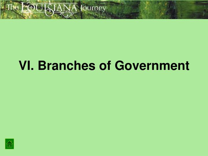 VI. Branches of Government