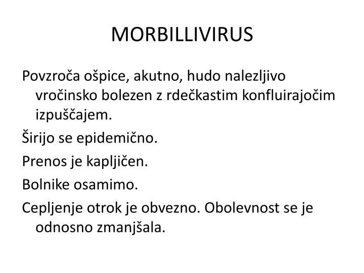 MORBILLIVIRUS