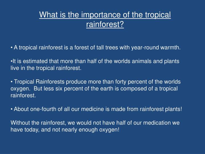 What is the importance of the tropical rainforest?