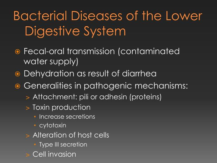 Bacterial Diseases of the Lower Digestive System