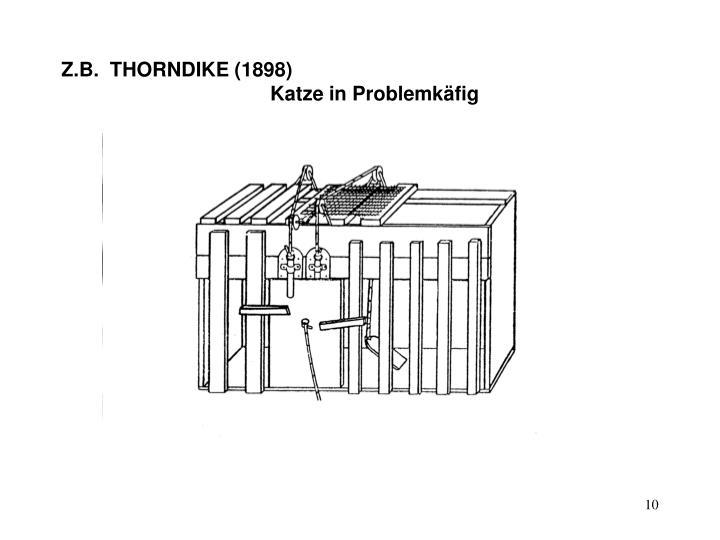 Z.B.  THORNDIKE (1898)