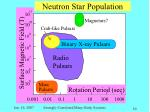 neutron star population