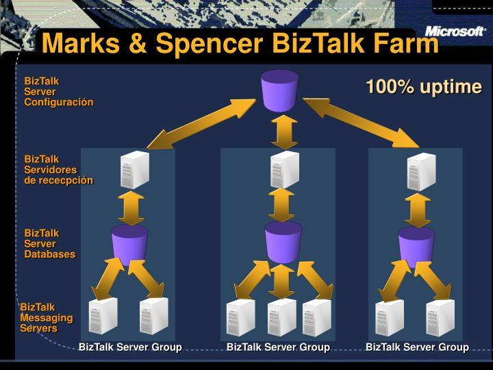 Marks & Spencer BizTalk Farm