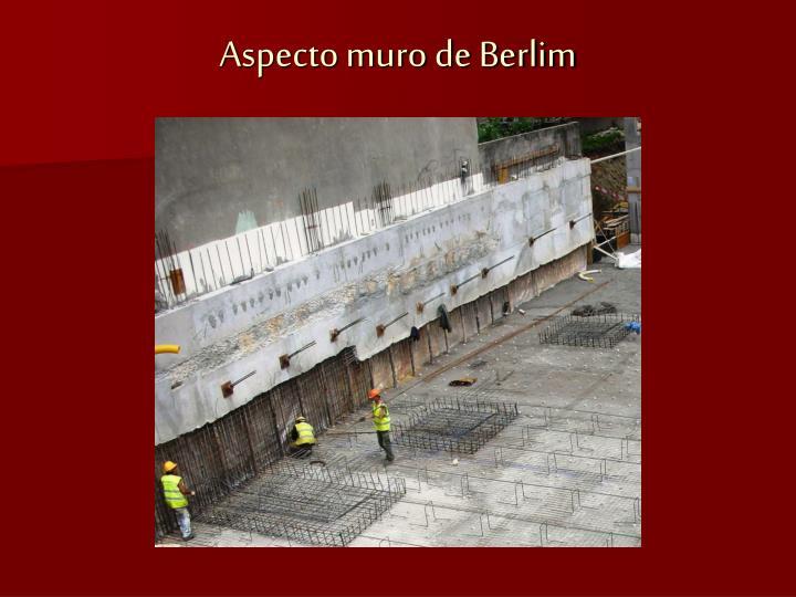 Aspecto muro de Berlim