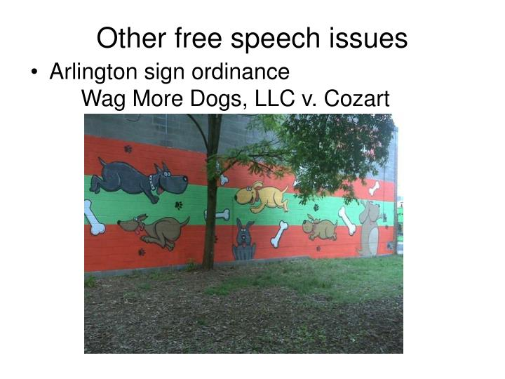 Other free speech issues