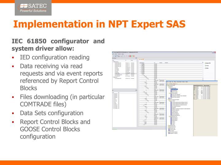 Implementation in NPT Expert SAS