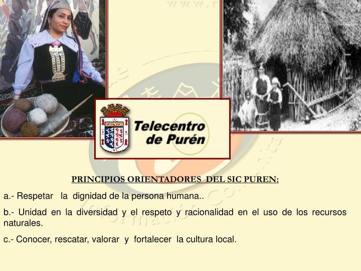 PRINCIPIOS ORIENTADORES  DEL SIC PUREN: