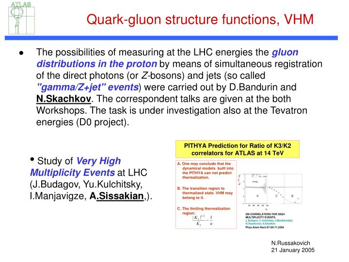 Quark-gluon structure functions, VHM