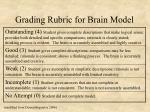 grading rubric for brain model