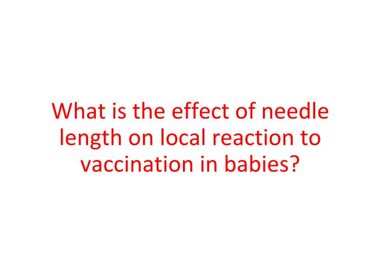 What is the effect of needle length on local reaction to vaccination in babies?