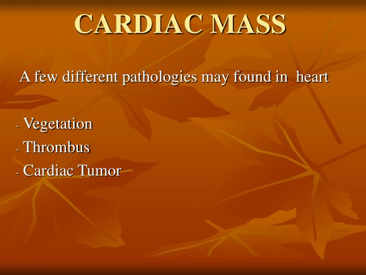A few different pathologies may found in heart vegetation thrombus cardiac tumor