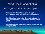 mindfulness and phobia