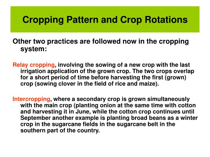cropping pattern and cropping schedule environmental sciences essay Only cropping season and during kharif - 1, and kharif - 2 lands became fallow due to inundate on flood water in rabi season boro is the main crop and damaged by flash flood due to.