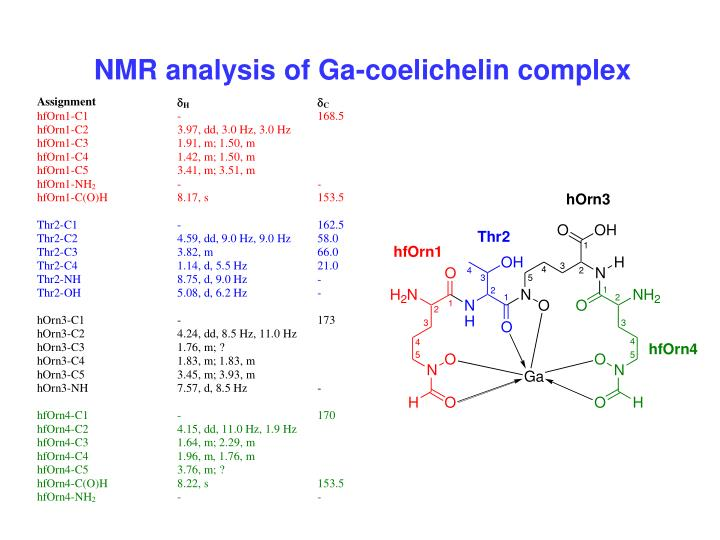 NMR analysis of Ga-coelichelin complex