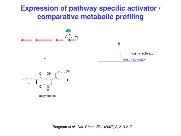 Expression of pathway specific activator / comparative metabolic profiling
