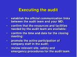 executing the audit2